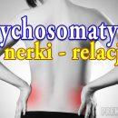 Psychosomatyka nerki - jak relacje odbijają się w ciele fizycznym