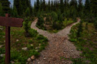 Podążanie własną Ścieżką