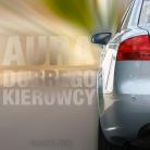 Aura Dobrego Kierowcy (stres na drodze)