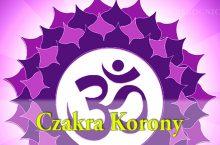 Afirmacje czakry korony – 12-minutowe, bonusowe nagranie dla subskrybentów Biuletynu Prekognicja.pl