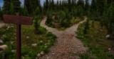 Podążanie własną ścieżką | przypowieść